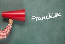 Как объяснить простыми словами, что такое франшиза?