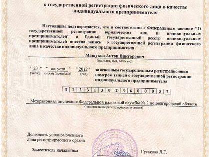 В России может появиться новый статус ИП